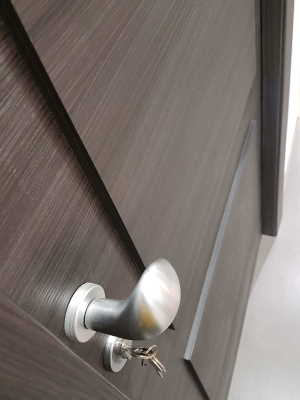 soundproof door handles